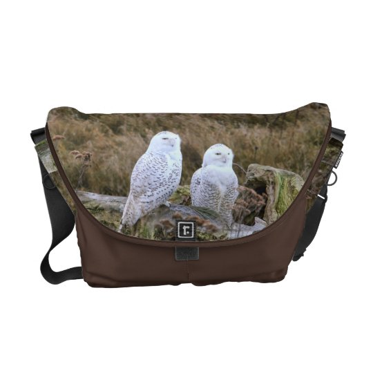 Snowy Owl Couple on Chocolate Brown Courier Bags