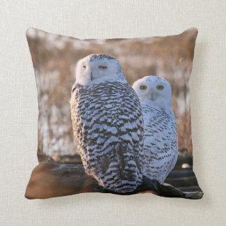 Snowy Owl Couple Throw Pillow