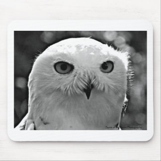 Snowy Owl Gift Collection Mouse Pad