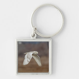 Snowy owl in flight keychain
