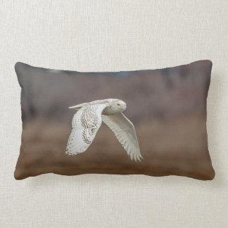 Snowy owl in flight lumbar pillow