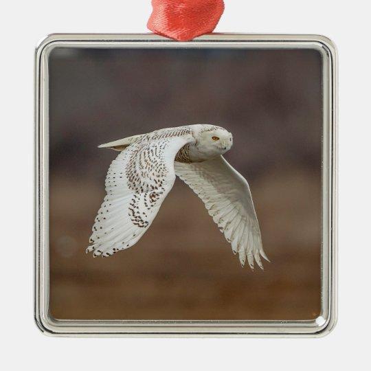 Snowy owl in flight metal ornament