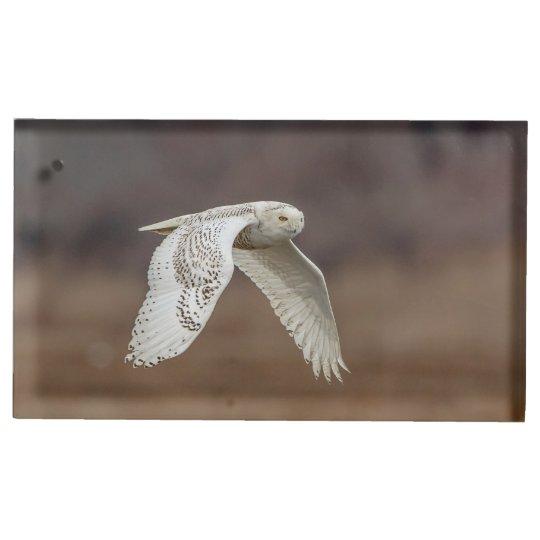 Snowy owl in flight place card holder