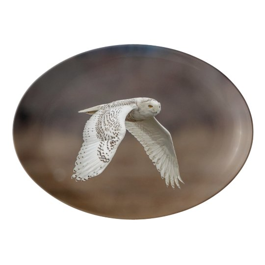 Snowy owl in flight porcelain serving platter