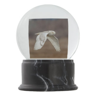 Snowy owl in flight snow globe
