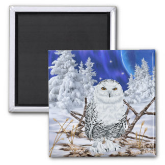 Snowy Owl in Snow Square Magnet