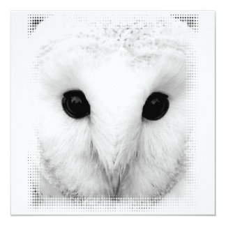 Snowy Owl Invitation
