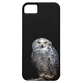Snowy Owl is on the phone for you! Case For The iPhone 5