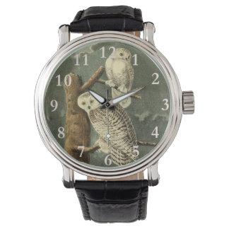 Snowy Owl John James Audubon Vintage Illustration Watch