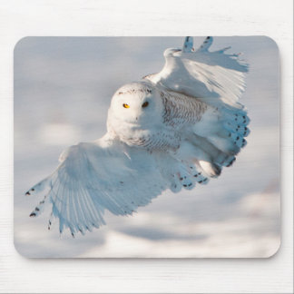 Snowy Owl landing on snow Mouse Pad