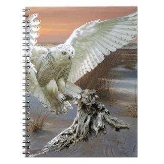 Snowy Owl Notebooks