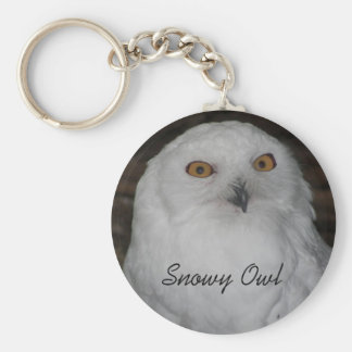 Snowy Owl Photo Basic Round Button Keychain