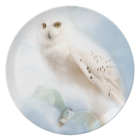 Snowy Owl plate
