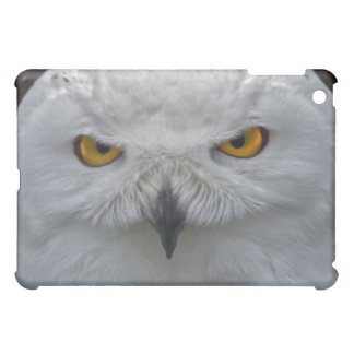 Snowy Owl Portrait iPad Mini Case