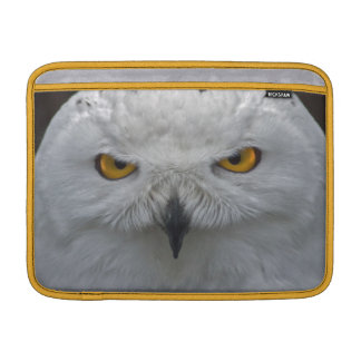 Snowy Owl Portrait MacBook Air Sleeve