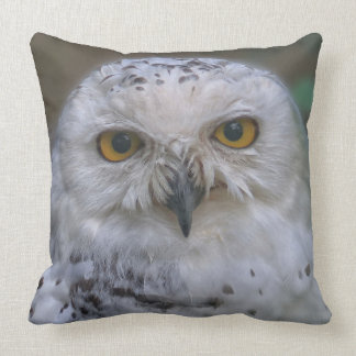 Snowy Owl Q, Schnee-Eule Throw Pillow
