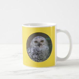 Snowy Owl, Schnee-Eule 02_rd Coffee Mug