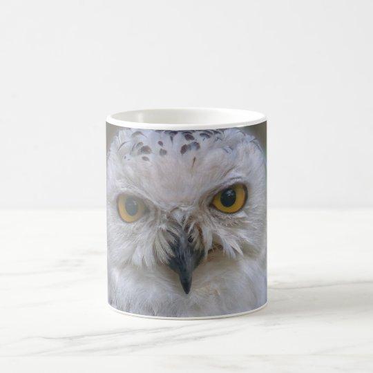 Snowy Owl, Schnee-Eule Coffee Mug