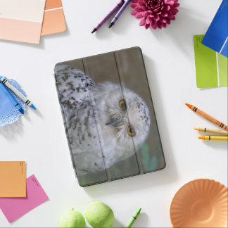Snowy Owl, Schnee-Eule iPad Pro Cover