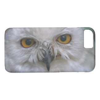 Snowy Owl, Schnee-Eule iPhone 8/7 Case