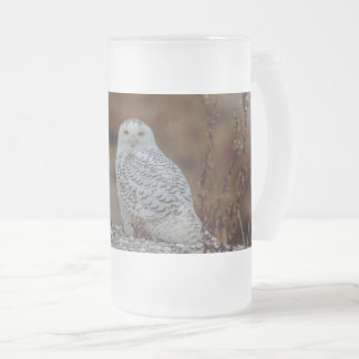Snowy owl sitting on a rock frosted glass beer mug