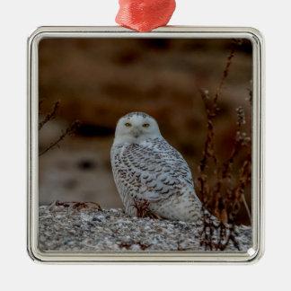 Snowy owl sitting on a rock metal ornament