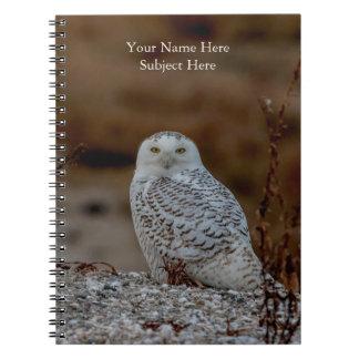 Snowy owl sitting on a rock notebooks