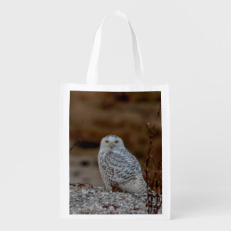 Snowy owl sitting on a rock reusable grocery bag