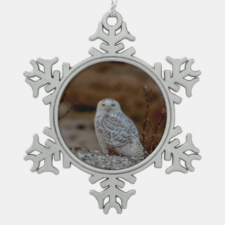 Snowy owl sitting on a rock snowflake pewter christmas ornament