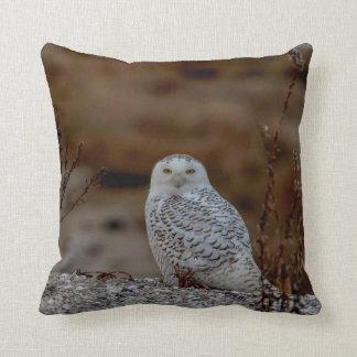 Snowy owl sitting on a rock throw pillow