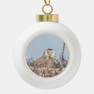 Snowy owl sitting on the beach ceramic ball christmas ornament