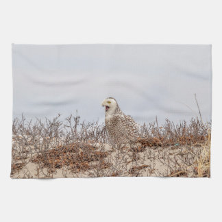 Snowy owl sitting on the beach kitchen towel