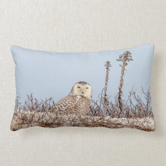 Snowy owl sitting on the beach lumbar pillow