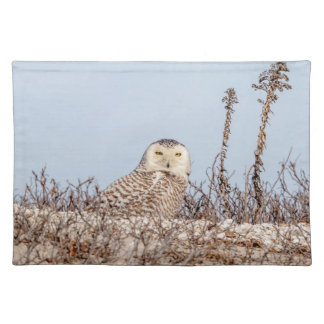 Snowy owl sitting on the beach placemat