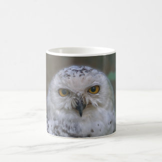Snowy Owl, snow owl Coffee Mug