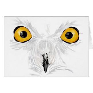 Snowy owl staring card