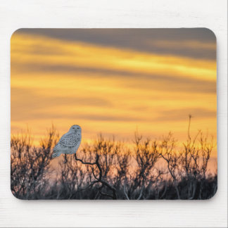 Snowy Owl Sunset Mouse Pad