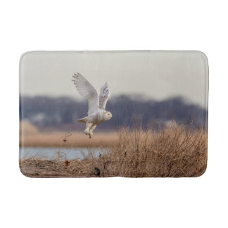 Snowy owl taking off bath mat