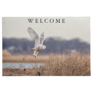 Snowy owl taking off doormat