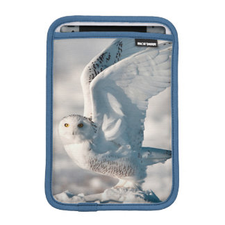 Snowy Owl taking off from snow Sleeve For iPad Mini