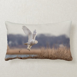 Snowy owl taking off lumbar pillow