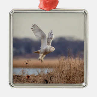 Snowy owl taking off metal ornament