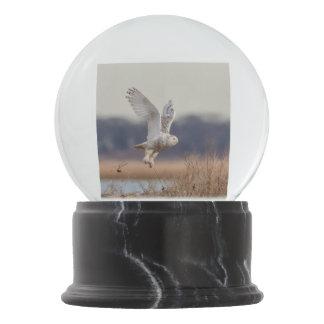 Snowy owl taking off snow globe