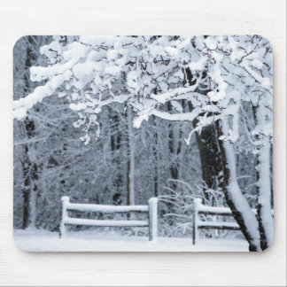Snowy Paradise Mouse Pad