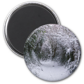 Snowy Path Magnet