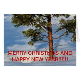 SNOWY PINE TREE Christmas CARD