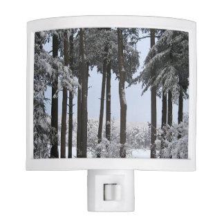 Snowy Pines in Blue Light --- Night Light