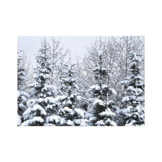 Snowy Pines Stretched Canvas Print