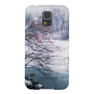 Snowy Pond in Central Park Case For Galaxy S5