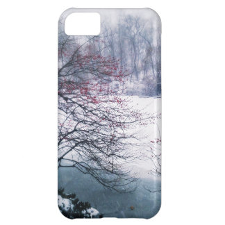Snowy Pond in Central Park iPhone 5C Covers
